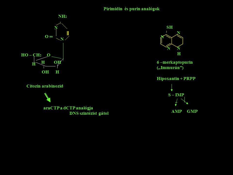 ═ Pirimidin és purin analógok NH2 N SH N O ═ N N N N H HO – CH2 O H OH