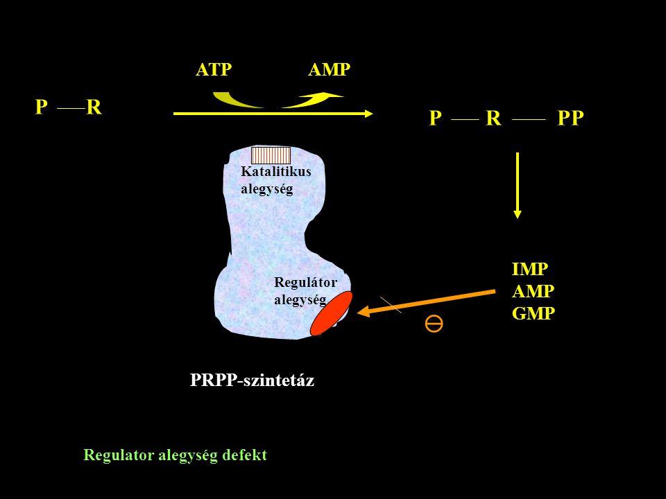P R P R PP  ATP AMP IMP AMP GMP PRPP-szintetáz