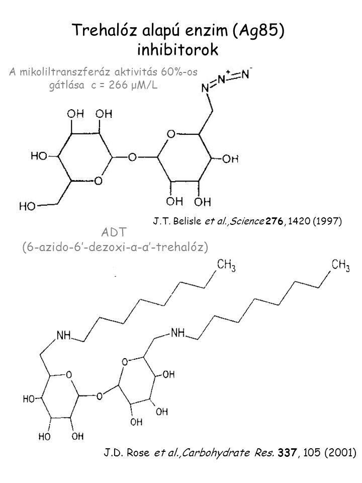 Trehalóz alapú enzim (Ag85) inhibitorok