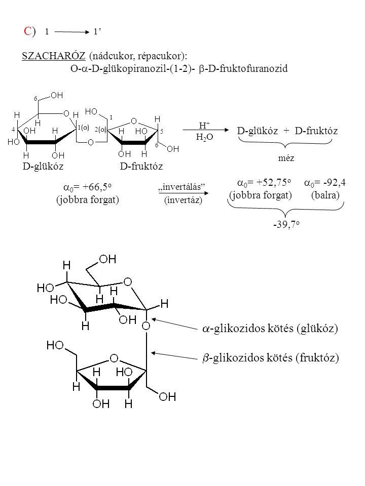 a-glikozidos kötés (glükóz) b-glikozidos kötés (fruktóz)
