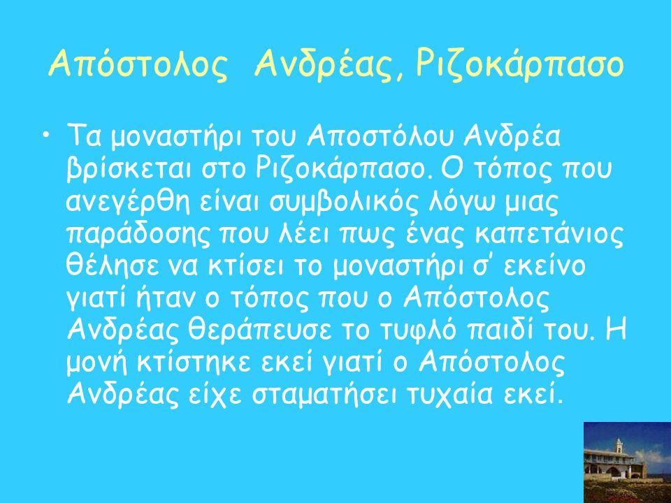 Απόστολος Ανδρέας, Ριζοκάρπασο