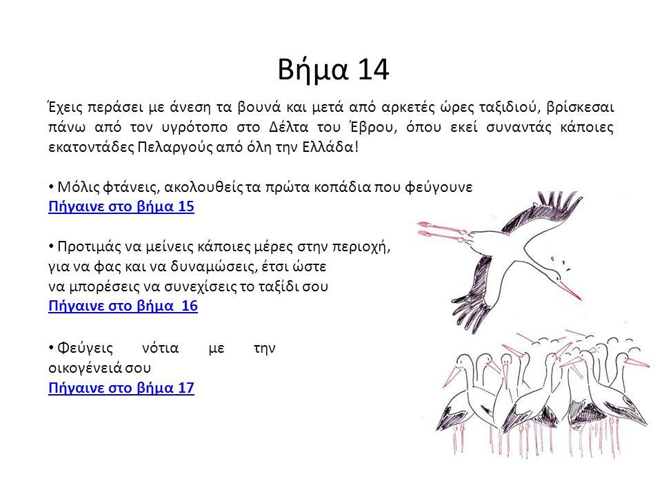 Βήμα 14