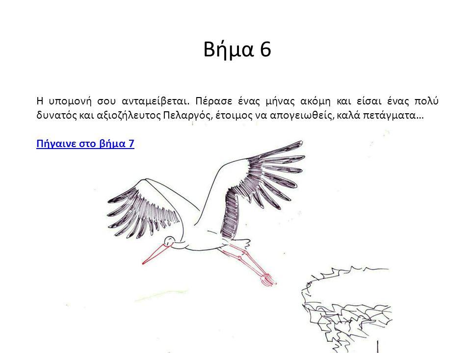 Βήμα 6