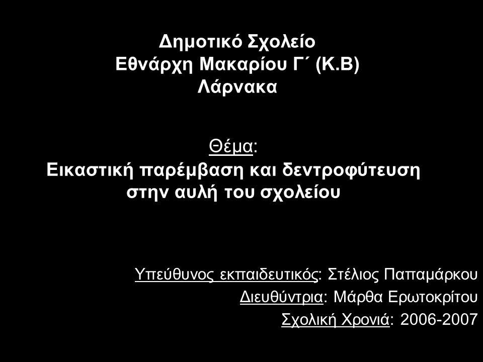 Δημοτικό Σχολείο Εθνάρχη Μακαρίου Γ΄ (Κ.Β) Λάρνακα