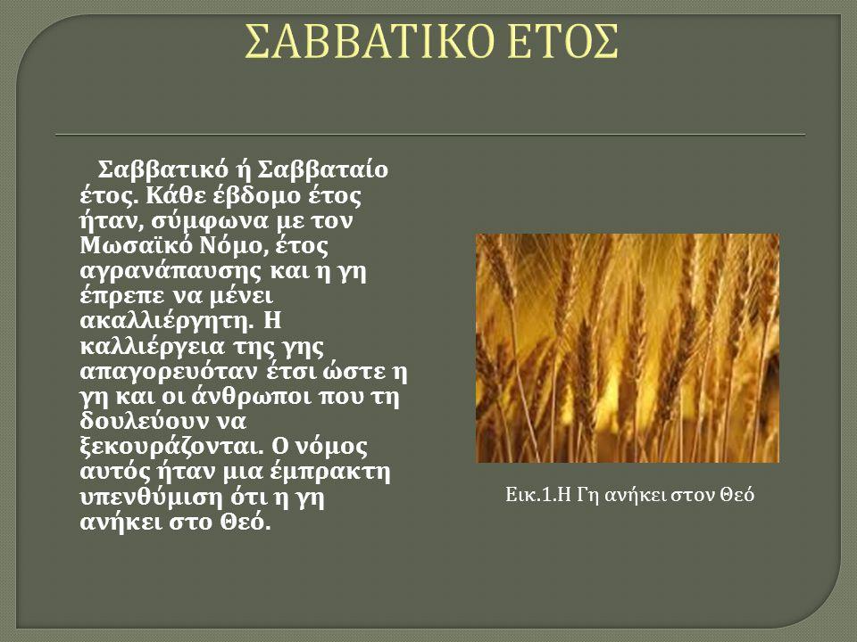 ΣΑΒΒΑΤΙΚΟ ΕΤΟΣ