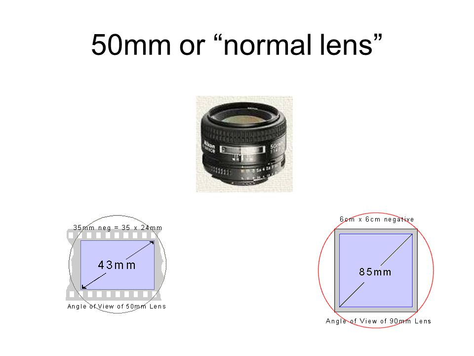 50mm or normal lens
