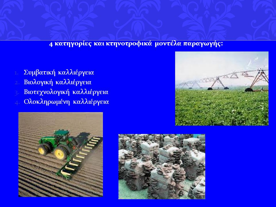 4 κατηγoρίες και κτηνοτροφικά μοντέλα παραγωγής: