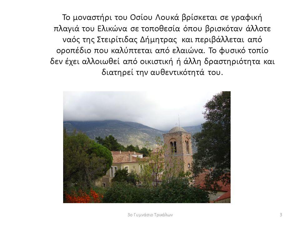 Το μοναστήρι του Οσίου Λουκά βρίσκεται σε γραφική πλαγιά του Ελικώνα σε τοποθεσία όπου βρισκόταν άλλοτε ναός της Στειρίτιδας Δήμητρας και περιβάλλεται από οροπέδιο που καλύπτεται από ελαιώνα. Το φυσικό τοπίο δεν έχει αλλοιωθεί από οικιστική ή άλλη δραστηριότητα και διατηρεί την αυθεντικότητά του.