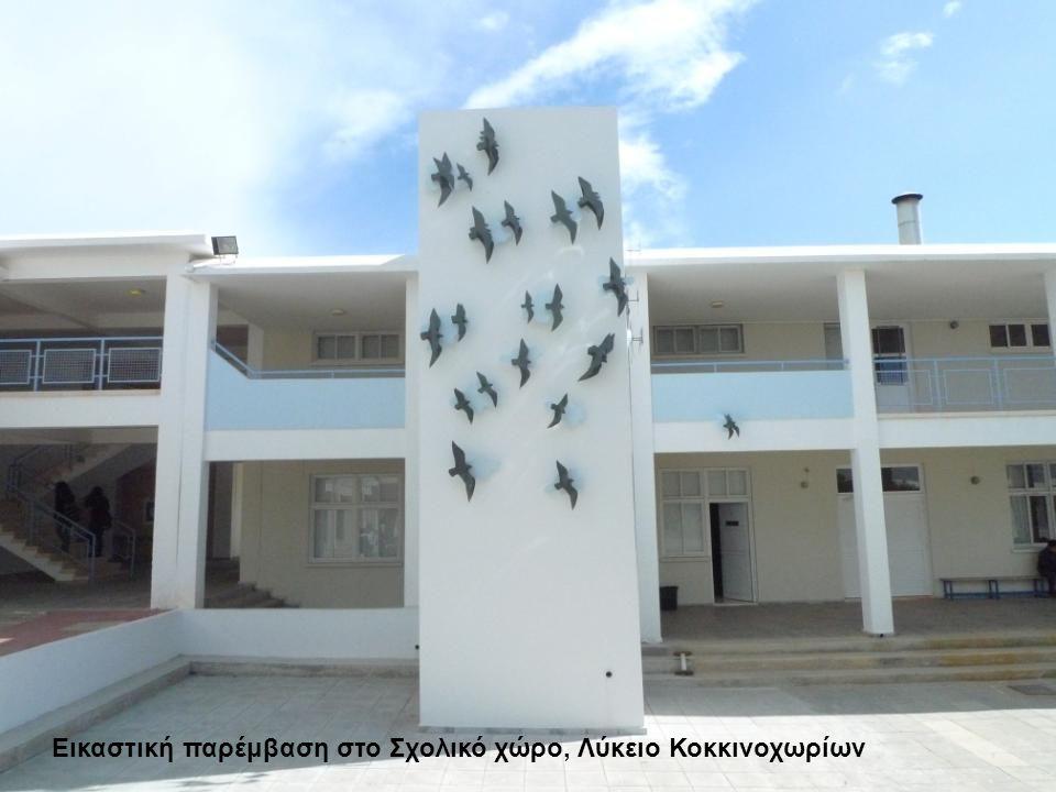 Εικαστική παρέμβαση στο Σχολικό χώρο, Λύκειο Κοκκινοχωρίων