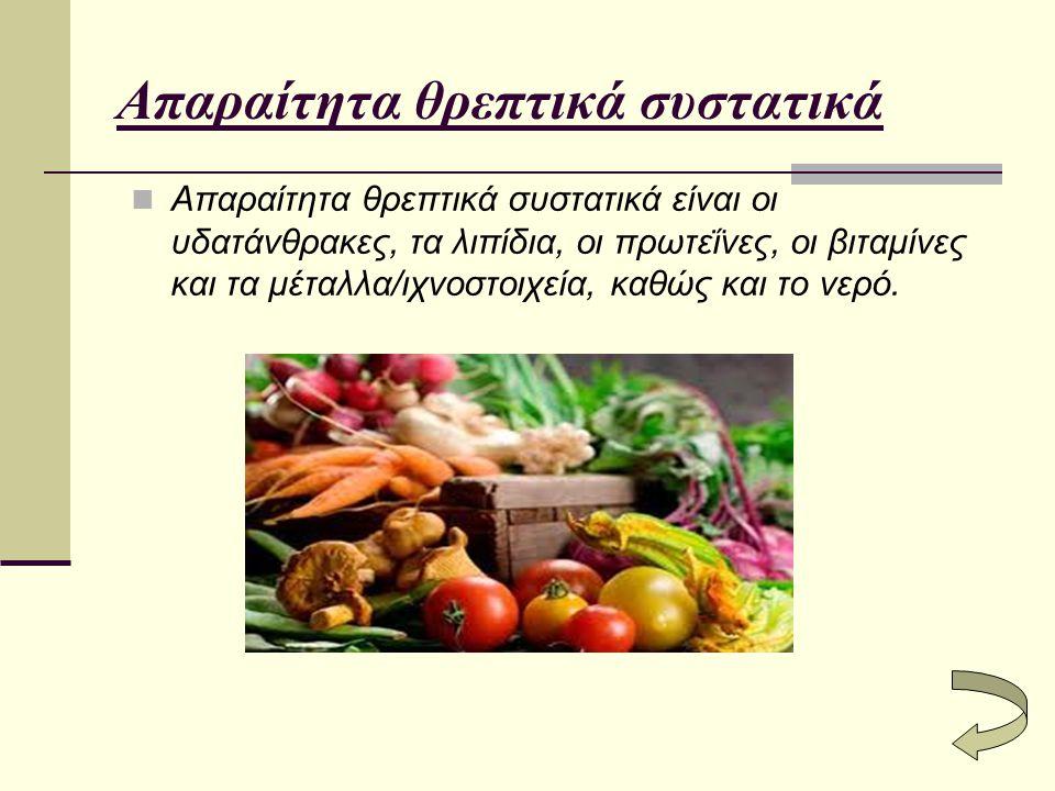 Απαραίτητα θρεπτικά συστατικά