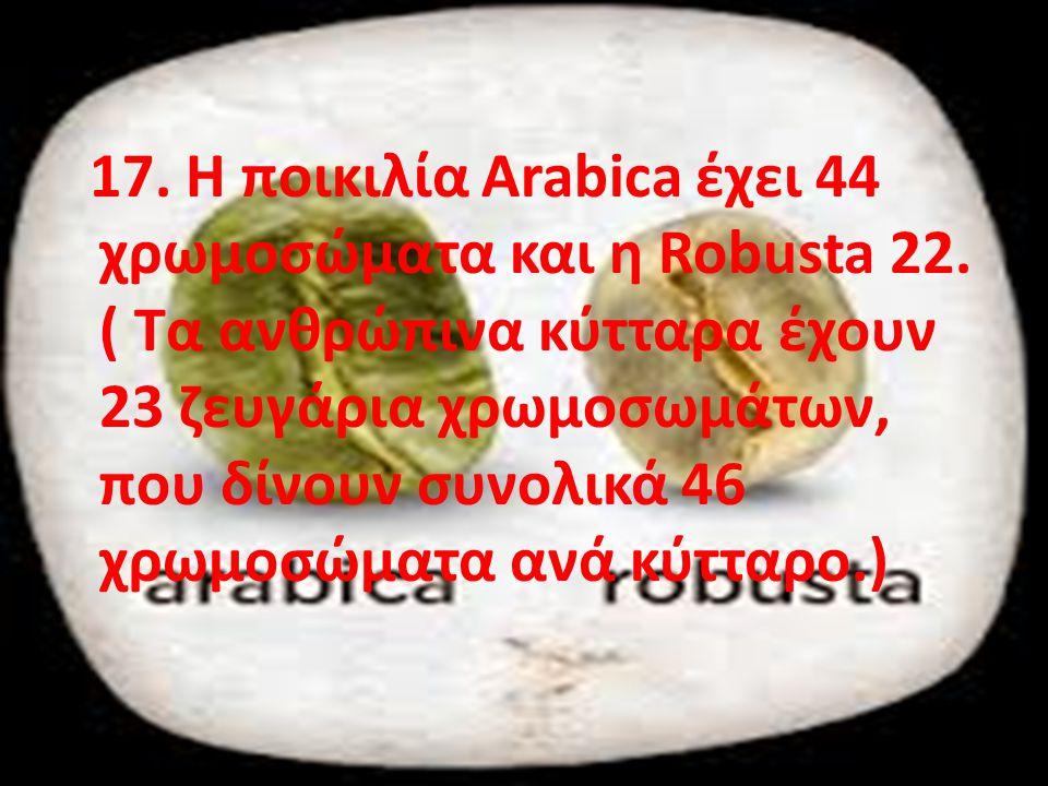 17. Η ποικιλία Arabica έχει 44 χρωμοσώματα και η Robusta 22