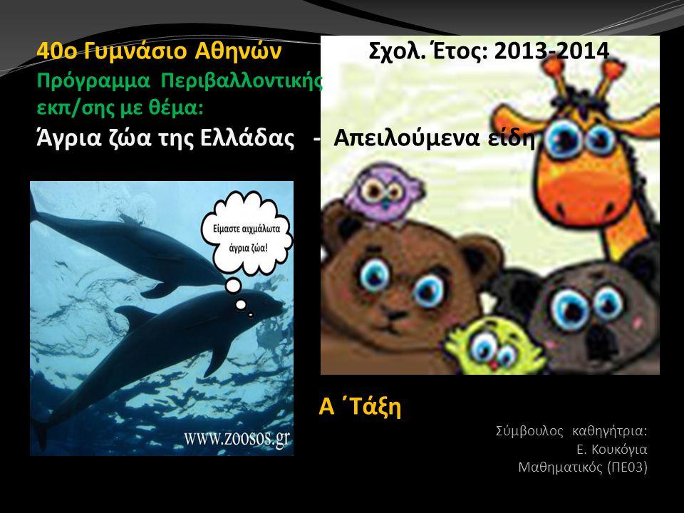 40ο Γυμνάσιο Αθηνών Σχολ. Έτος: 2013-2014