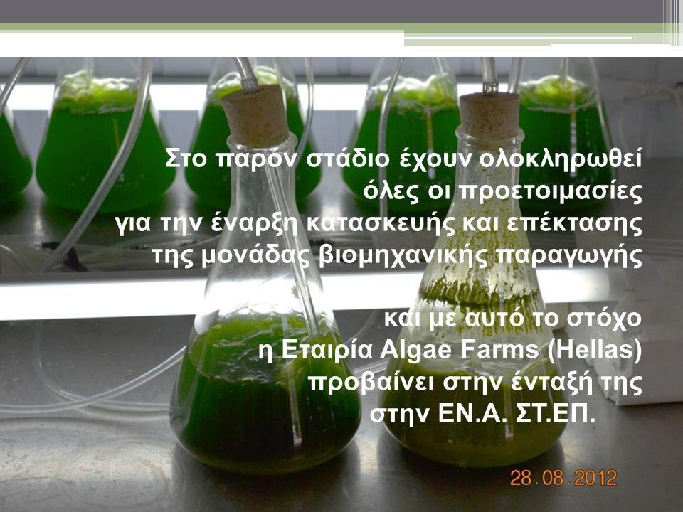 Στο παρόν στάδιο έχουν ολοκληρωθεί όλες οι προετοιμασίες για την έναρξη κατασκευής και επέκτασης της μονάδας βιομηχανικής παραγωγής και με αυτό το στόχο η Εταιρία Algae Farms (Hellas) προβαίνει στην ένταξή της στην ΕΝ.Α. ΣΤ.ΕΠ.