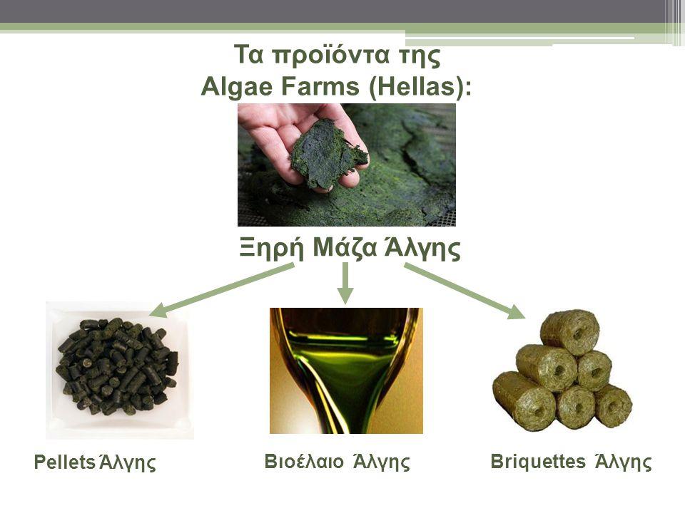 Τα προϊόντα της Algae Farms (Hellas):
