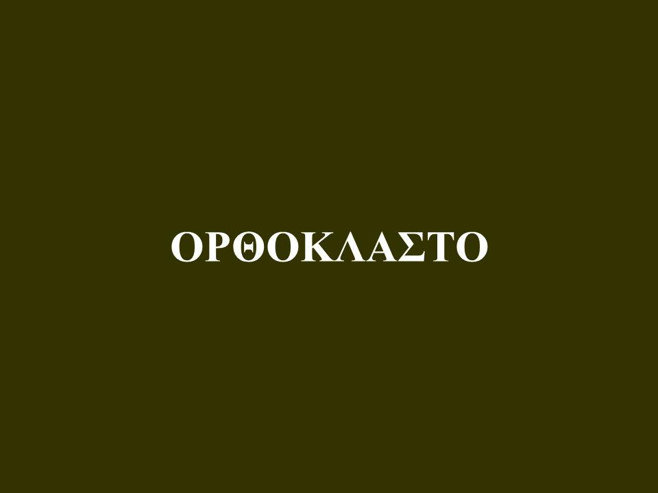 ΟΡΘΟΚΛΑΣΤΟ