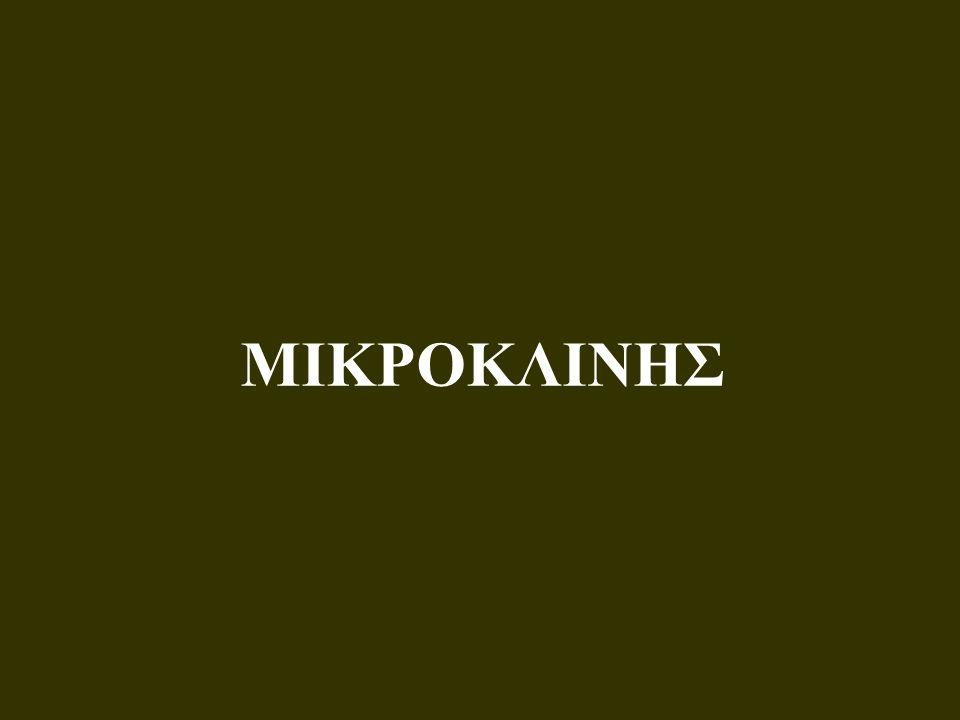 ΜΙΚΡΟΚΛΙΝΗΣ