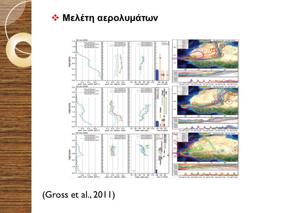 Μελέτη αερολυμάτων (Gross et al., 2011)