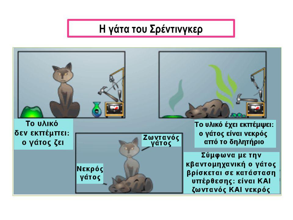 Η γάτα του Σρέντινγκερ