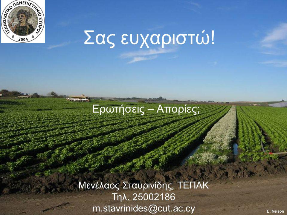 Μενέλαος Σταυρινίδης, ΤΕΠΑΚ