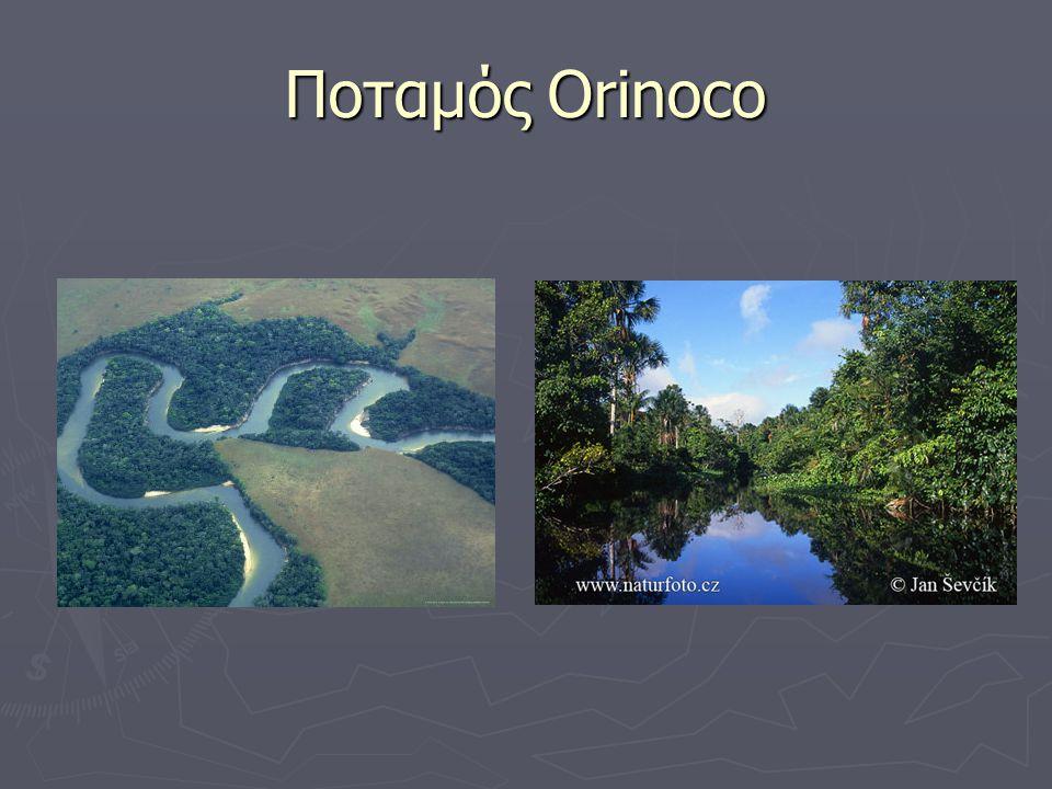 Ποταμός Orinoco