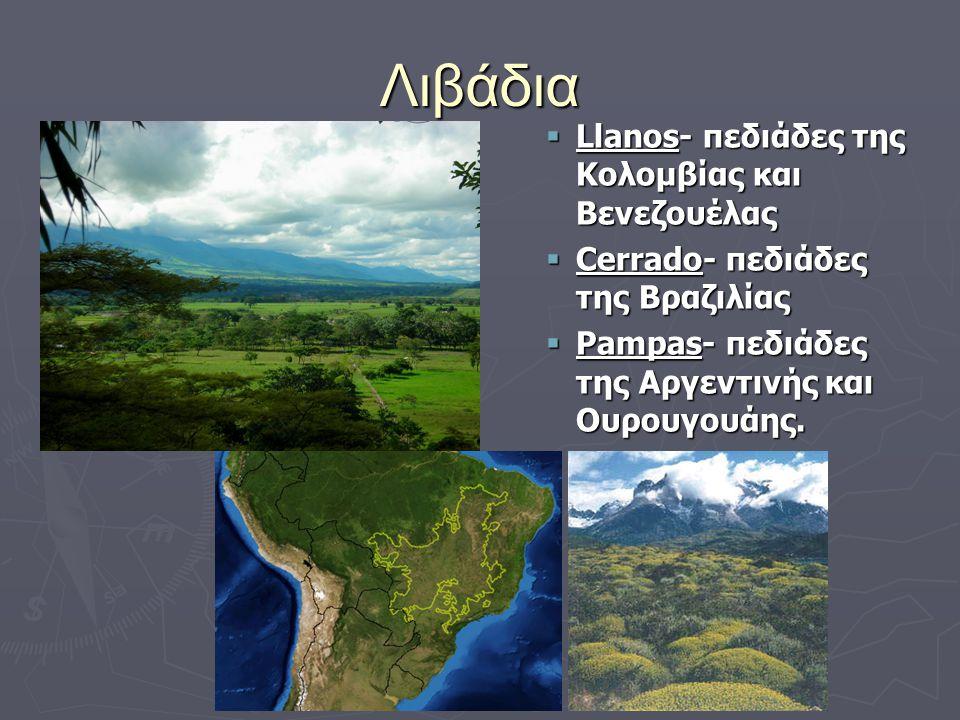 Λιβάδια Llanos- πεδιάδες της Κολομβίας και Βενεζουέλας