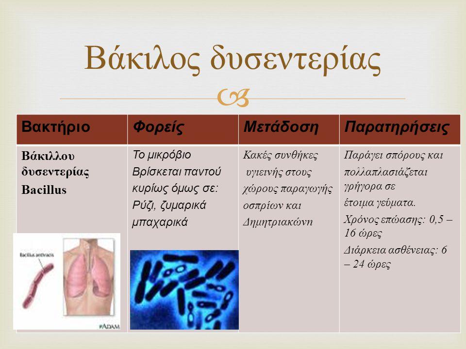 Βάκιλος δυσεντερίας Βακτήριο Φορείς Μετάδοση Παρατηρήσεις