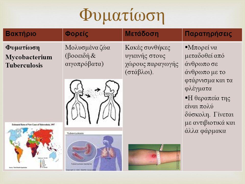 Φυματίωση Βακτήριο Φορείς Μετάδοση Παρατηρήσεις Φυματίωση