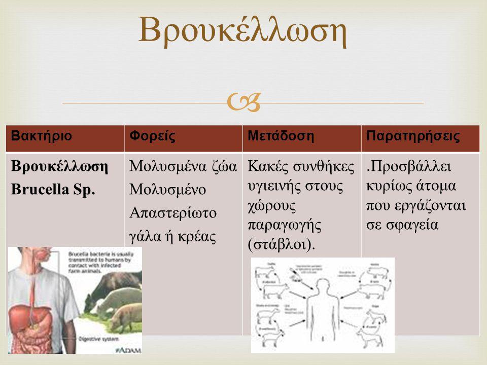 Βρουκέλλωση Βρουκέλλωση Brucella Sp. Μολυσμένα ζώα Μολυσμένο