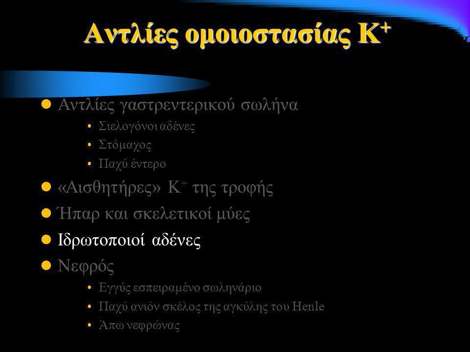 Αντλίες ομοιοστασίας Κ+