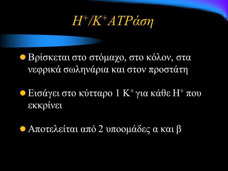 Η+/K+ATPάση Βρίσκεται στο στόμαχο, στο κόλον, στα νεφρικά σωληνάρια και στον προστάτη. Εισάγει στο κύτταρο 1 Κ+ για κάθε Η+ που εκκρίνει.
