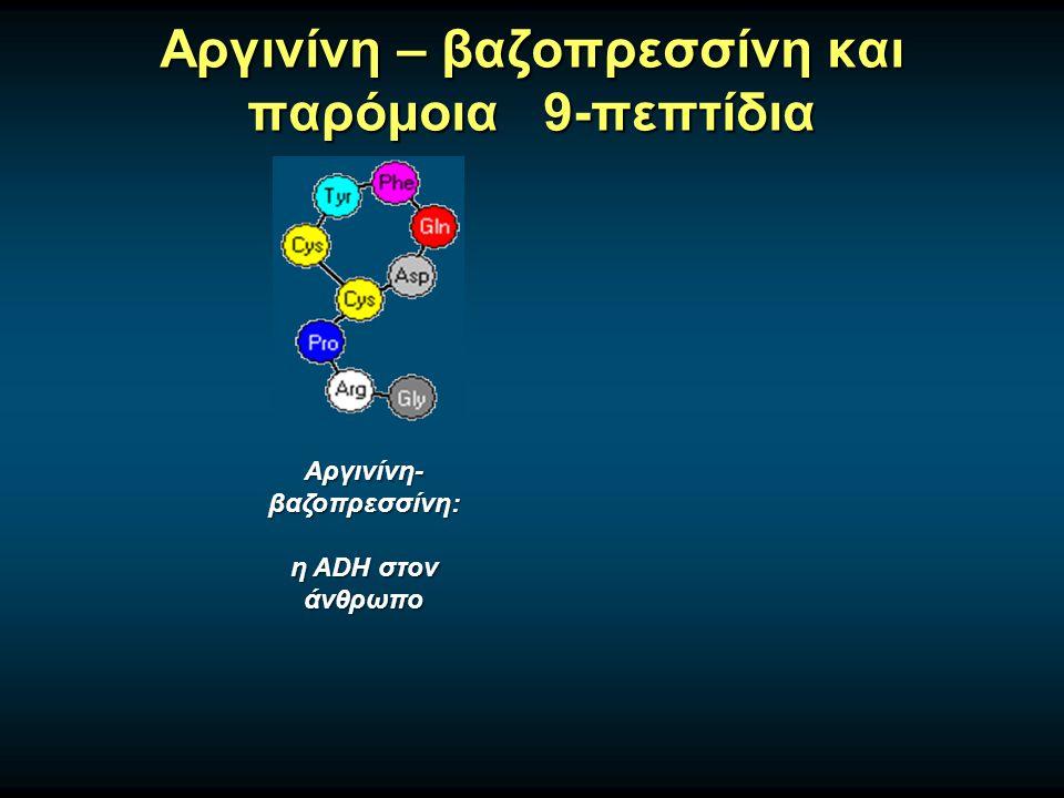 Αργινίνη – βαζοπρεσσίνη και παρόμοια 9-πεπτίδια