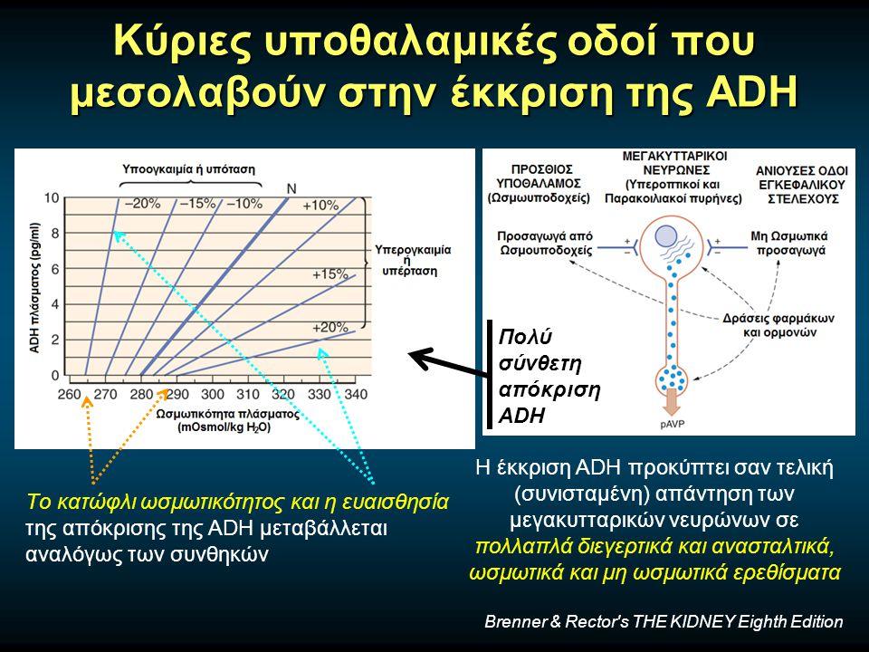Κύριες υποθαλαμικές οδοί που μεσολαβούν στην έκκριση της ADH