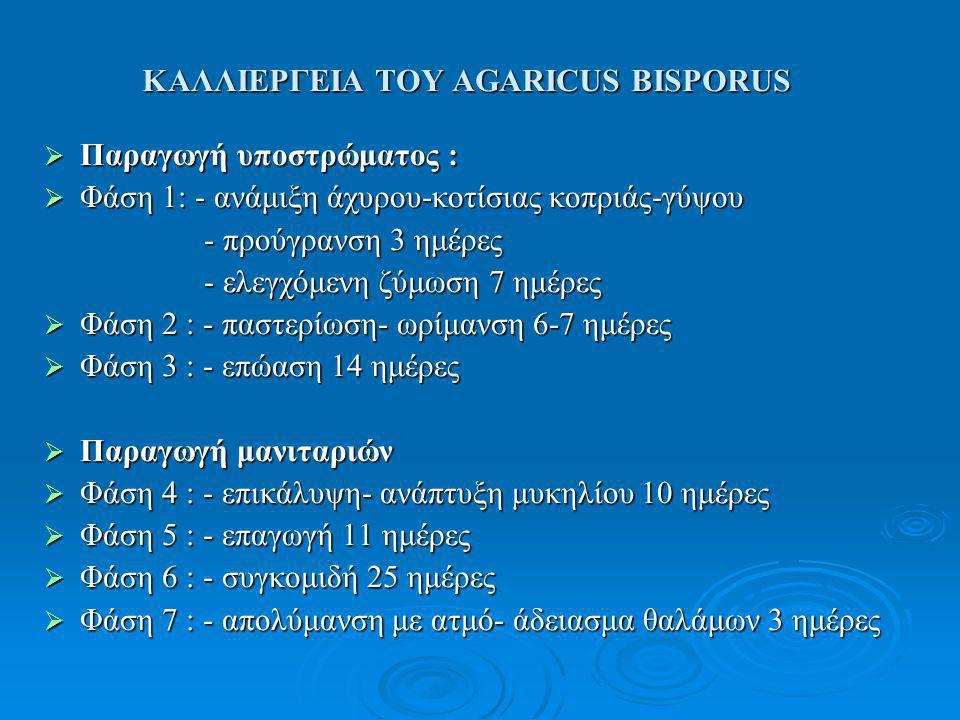 ΚΑΛΛΙΕΡΓΕΙΑ ΤΟΥ AGARICUS BISPORUS