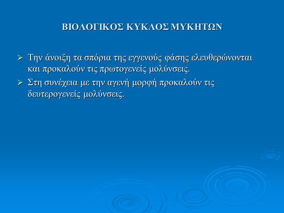 ΒΙΟΛΟΓΙΚΟΣ ΚΥΚΛΟΣ ΜΥΚΗΤΩΝ