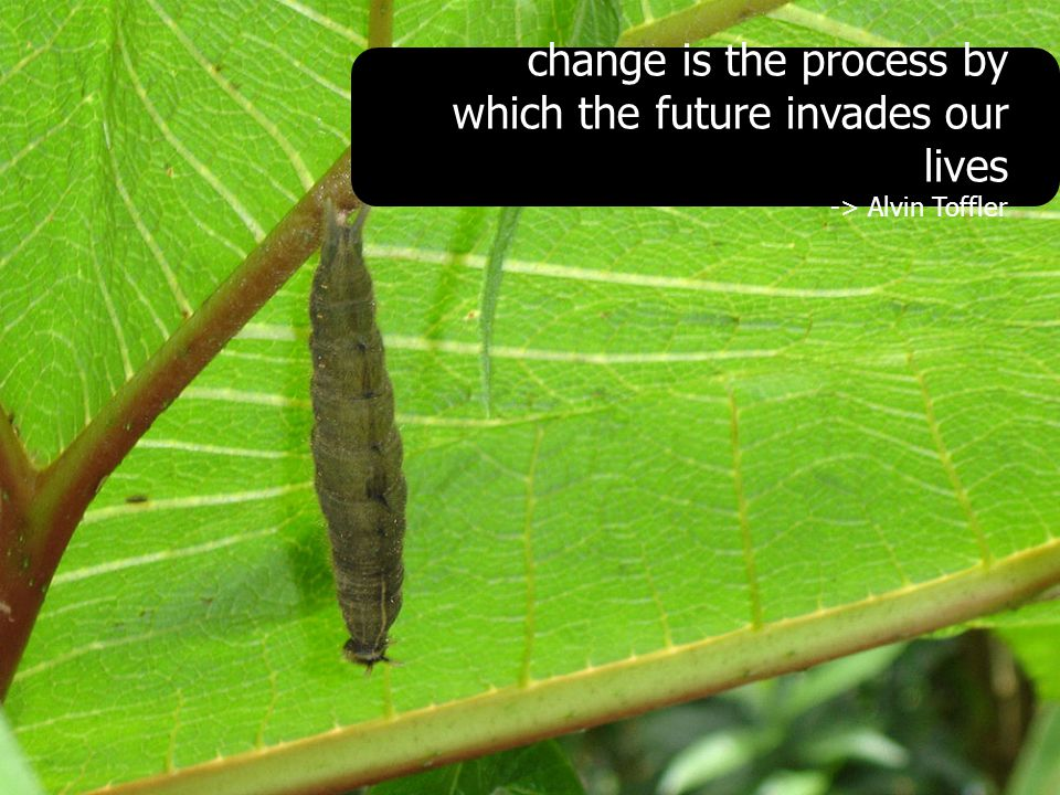 change is the process by which the future invades our lives