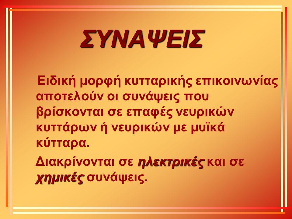 ΣΥΝΑΨΕΙΣ