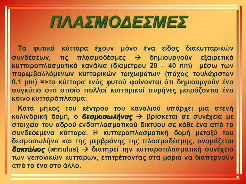 ΠΛΑΣΜΟΔΕΣΜΕΣ