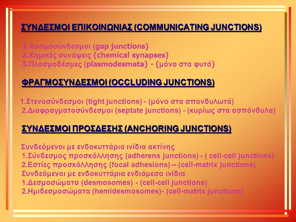 ΣΥΝΔΕΣΜΟΙ ΕΠΙΚΟΙΝΩΝΙΑΣ (COMMUNICATING JUNCTIONS) 1