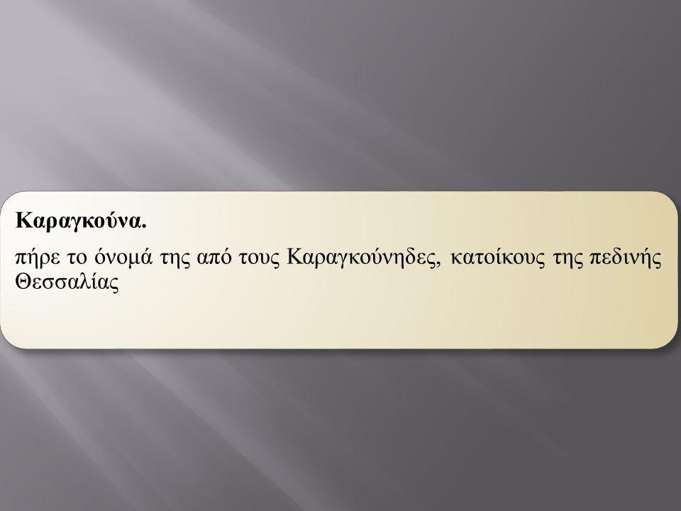 πήρε το όνομά της από τους Καραγκούνηδες, κατοίκους της πεδινής Θεσσαλίας