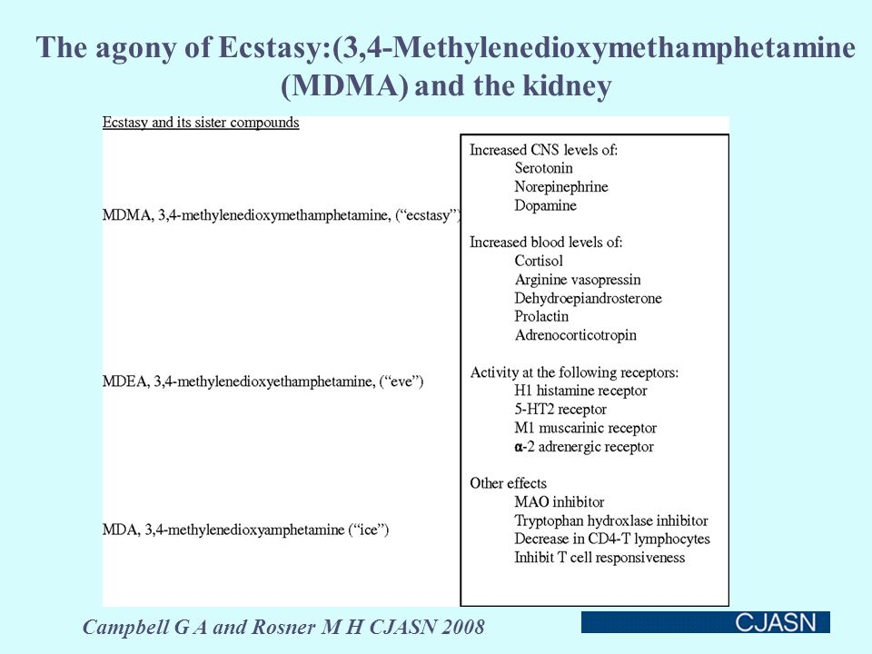 The agony of Ecstasy:(3,4-Methylenedioxymethamphetamine (MDMA) and the kidney