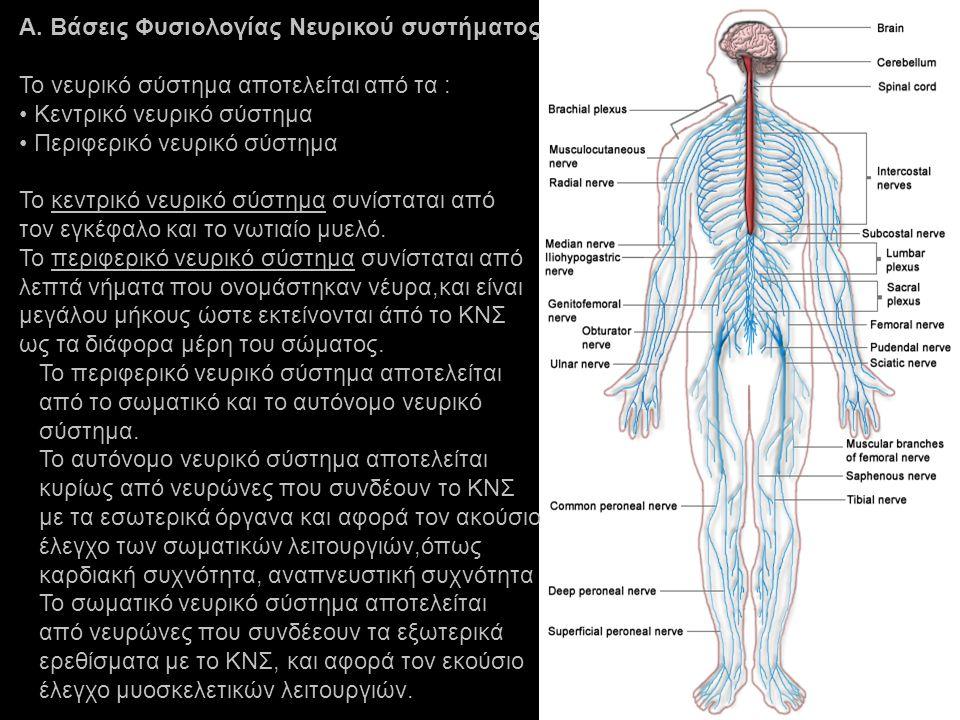 Α. Βάσεις Φυσιολογίας Νευρικού συστήματος
