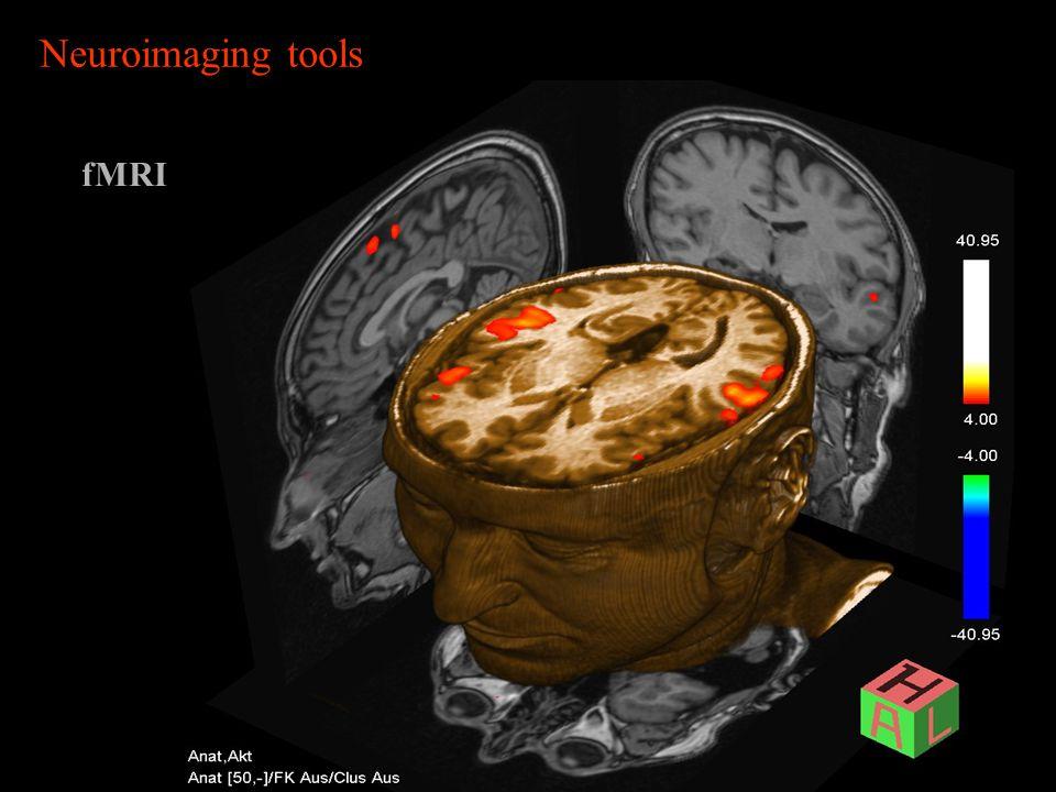 Neuroimaging tools fMRI