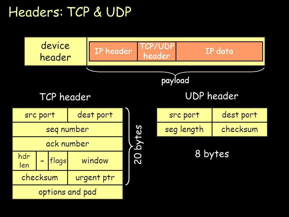 Headers: TCP & UDP device header UDP header TCP header 20 bytes