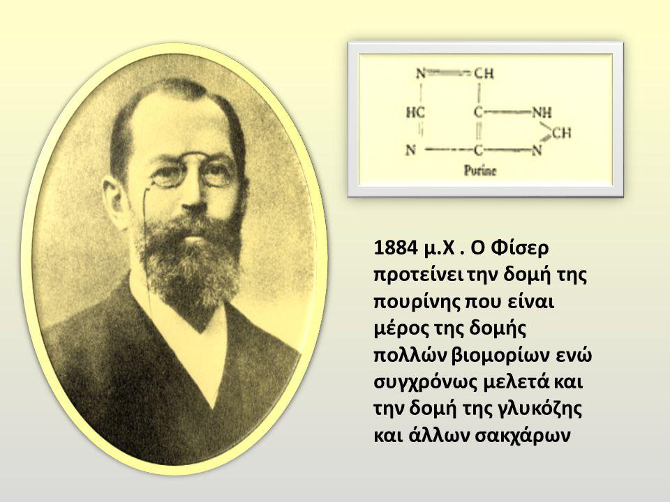 1884 μ.Χ .