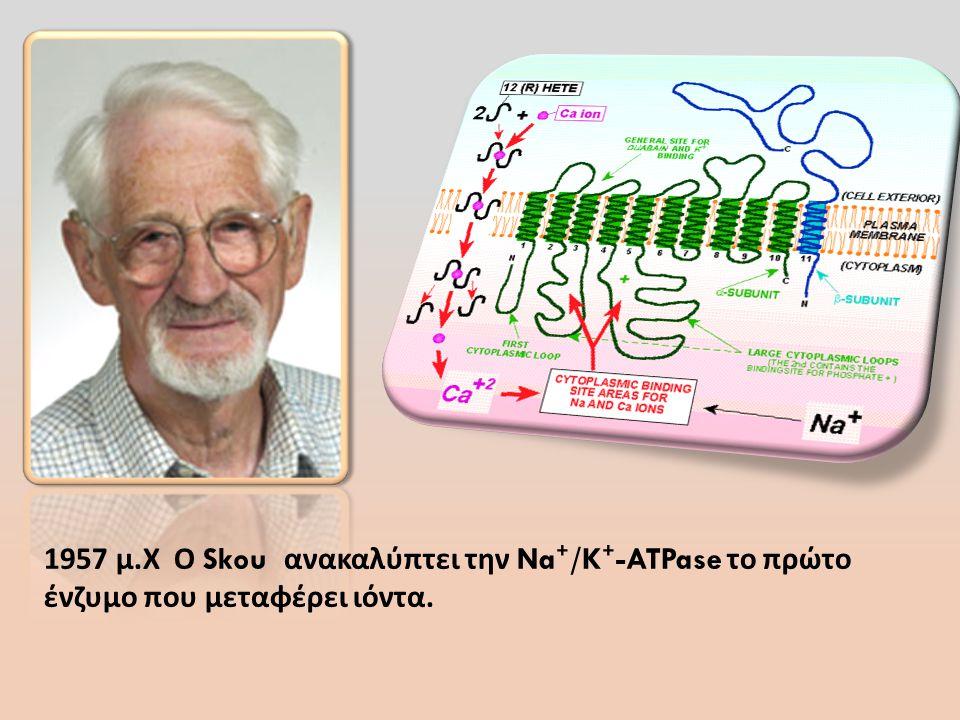 1957 μ.Χ Ο Skou ανακαλύπτει την Na⁺/K⁺-ATPase το πρώτο ένζυμο που μεταφέρει ιόντα.