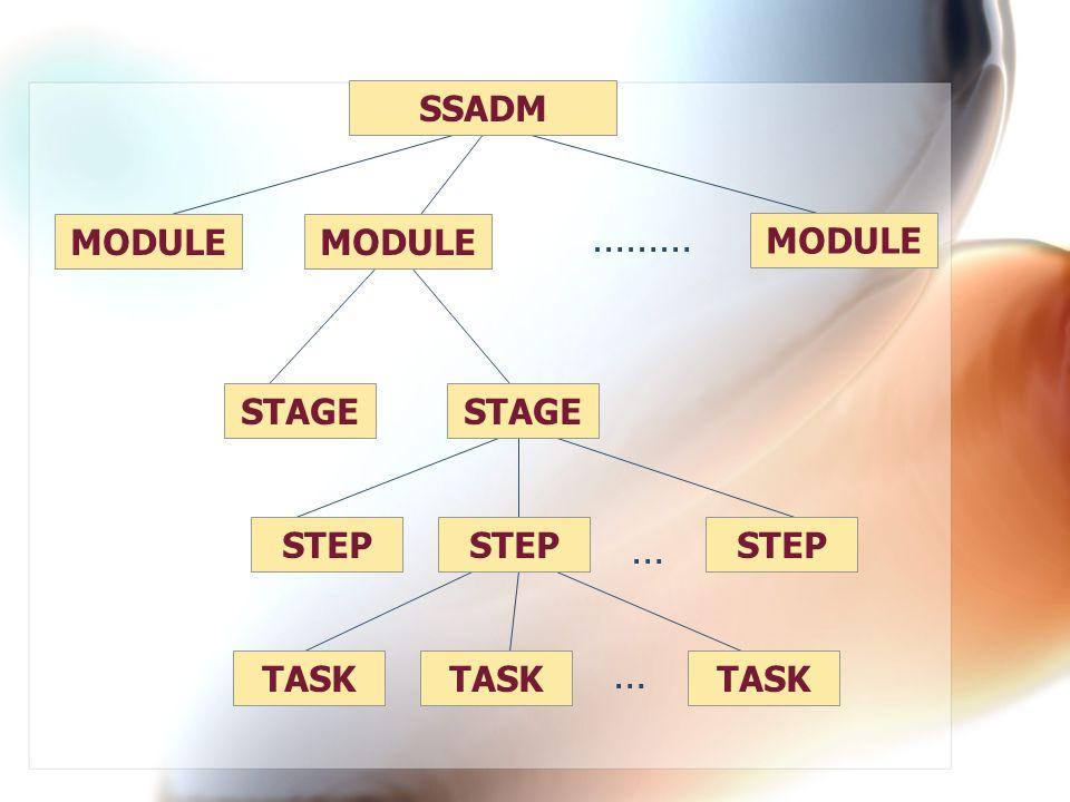 ……… … … SSADM MODULE MODULE MODULE STAGE STAGE STEP STEP STEP TASK