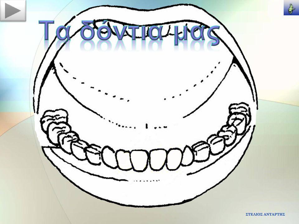 Τα δόντια μας