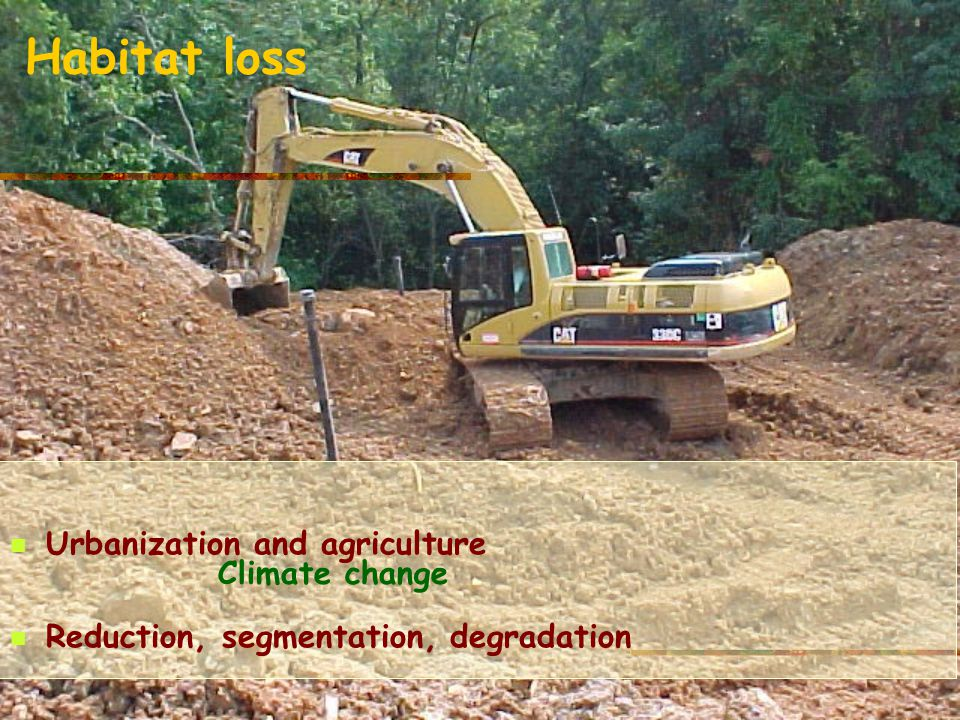 Habitat loss Urbanization and agriculture