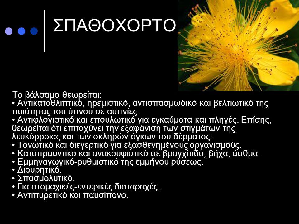 ΣΠΑΘΟΧΟΡΤΟ