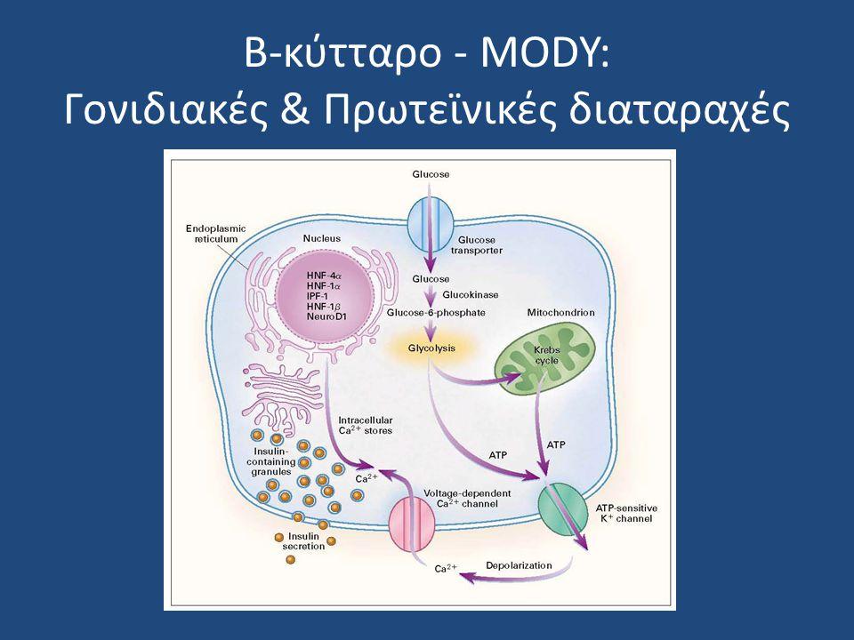 Β-κύτταρο - MODY: Γονιδιακές & Πρωτεϊνικές διαταραχές